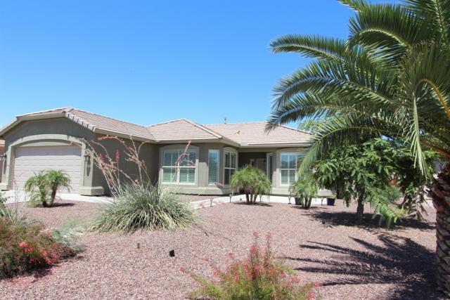 6694 S Huachuca Way, Chandler, AZ 85249 (MLS #5944365) :: Conway Real Estate