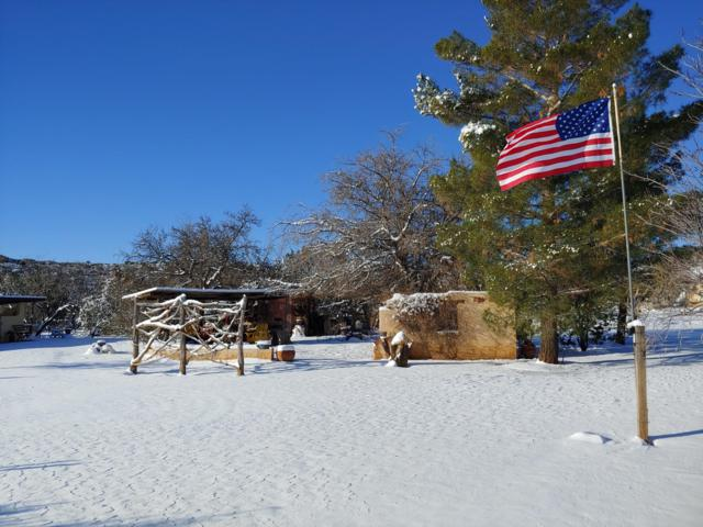 11515 S Hackberry Trail, Mayer, AZ 86333 (MLS #5944371) :: Brett Tanner Home Selling Team