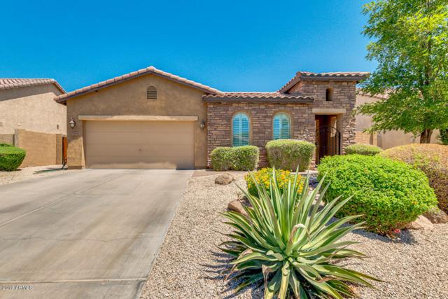 3984 E Grand Canyon Place, Chandler, AZ 85249 (MLS #5944382) :: The Property Partners at eXp Realty