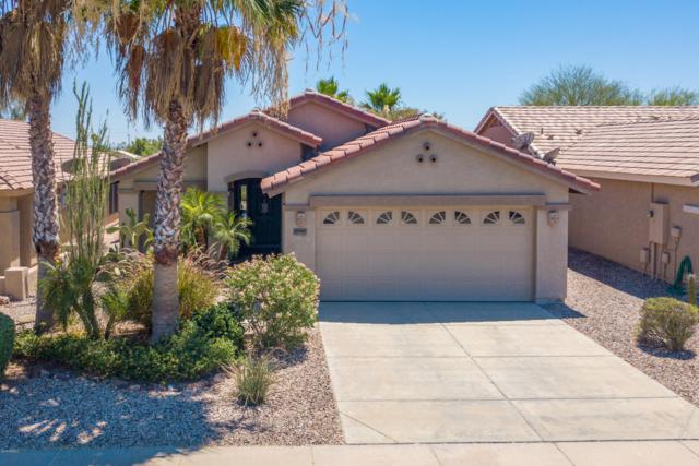 23167 W Lasso Lane, Buckeye, AZ 85326 (MLS #5944425) :: The Laughton Team