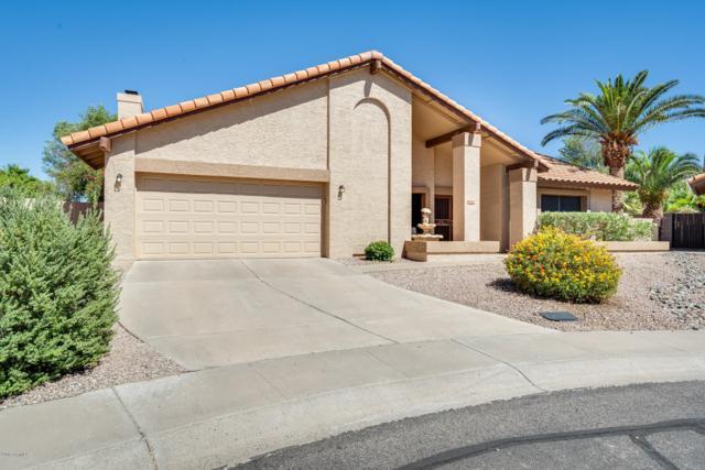 13098 N 99TH Street, Scottsdale, AZ 85260 (MLS #5944459) :: The W Group
