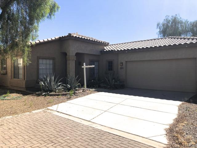 2651 E Indian Wells Place, Chandler, AZ 85249 (MLS #5944472) :: Riddle Realty