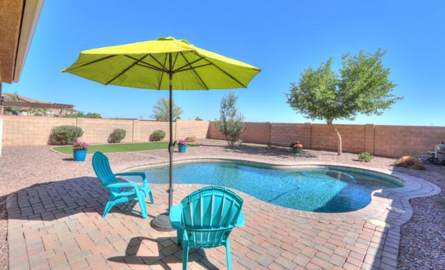 37063 W Oliveto Avenue, Maricopa, AZ 85138 (MLS #5944474) :: Lucido Agency