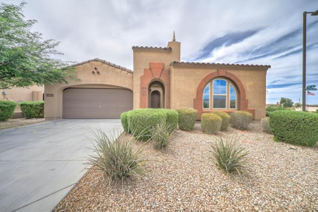 18210 W Desert Willow Drive, Goodyear, AZ 85338 (MLS #5944483) :: Conway Real Estate
