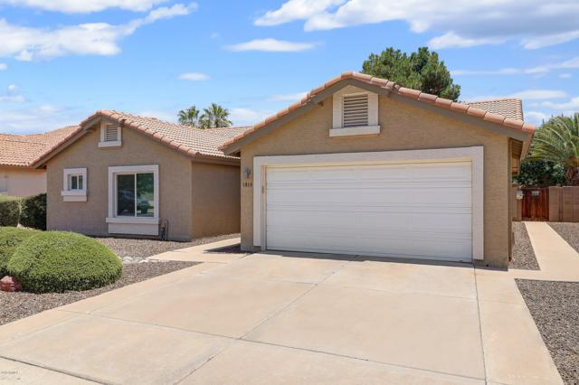1019 N Sailors Way, Gilbert, AZ 85234 (MLS #5944499) :: Revelation Real Estate