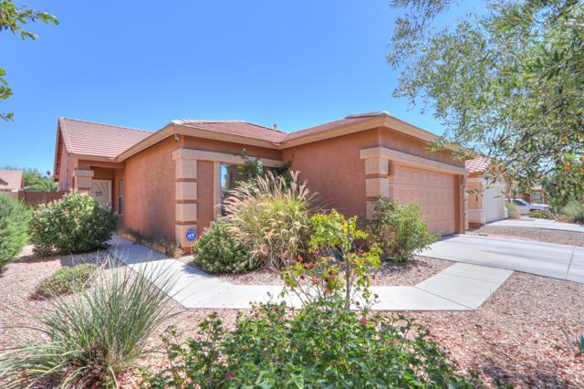 44556 W Yucca Lane, Maricopa, AZ 85138 (MLS #5944526) :: CANAM Realty Group