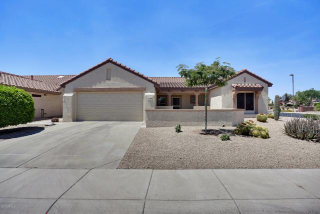 17756 N Escalante Lane, Surprise, AZ 85374 (MLS #5944534) :: The Laughton Team