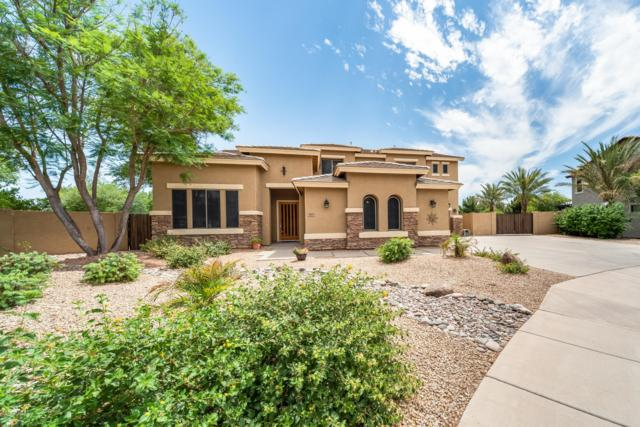 489 E Crescent Way, Chandler, AZ 85249 (MLS #5944535) :: The Kenny Klaus Team