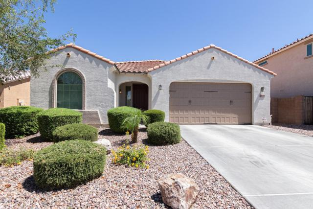 2028 E Hazeltine Way, Gilbert, AZ 85298 (MLS #5944545) :: CANAM Realty Group