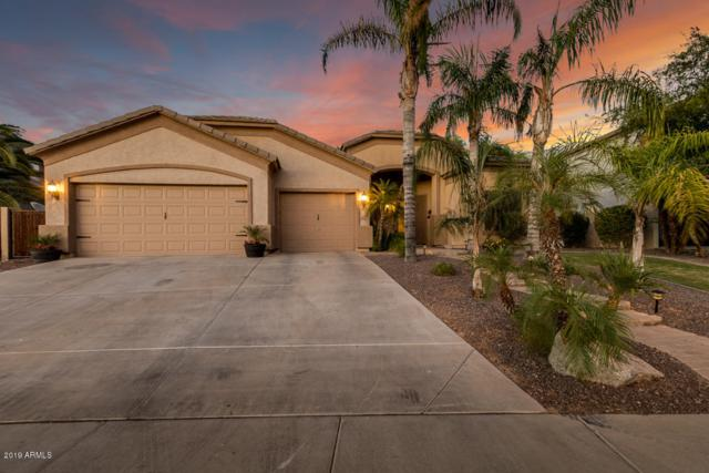 2627 S Balboa Drive, Gilbert, AZ 85295 (MLS #5944546) :: CANAM Realty Group