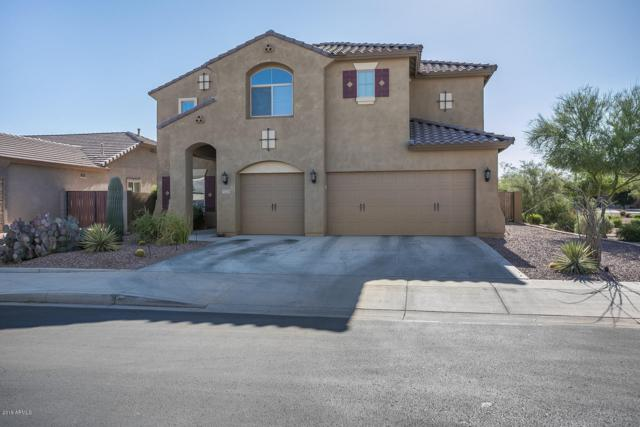 5124 S Oxley, Mesa, AZ 85212 (MLS #5944550) :: Phoenix Property Group