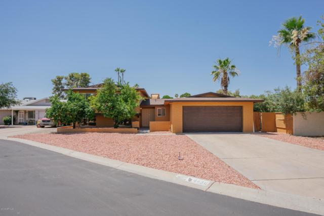 4438 W Cathy Circle, Glendale, AZ 85308 (MLS #5944556) :: Revelation Real Estate