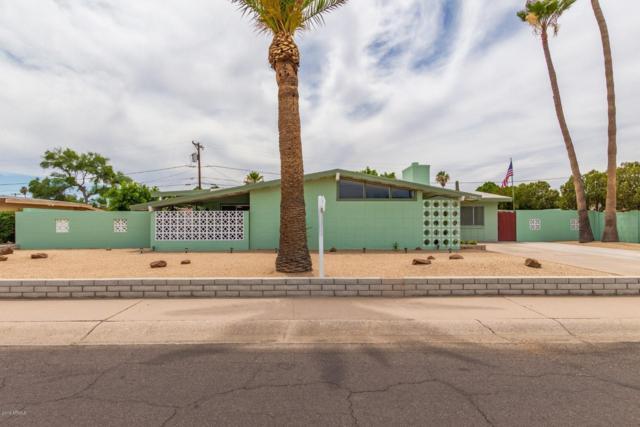 5348 N 61ST Drive, Glendale, AZ 85301 (MLS #5944571) :: REMAX Professionals