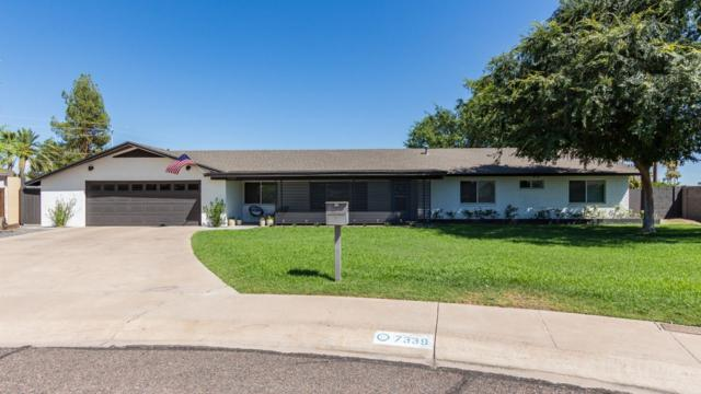 7339 N 6TH Way, Phoenix, AZ 85020 (MLS #5944583) :: Kepple Real Estate Group
