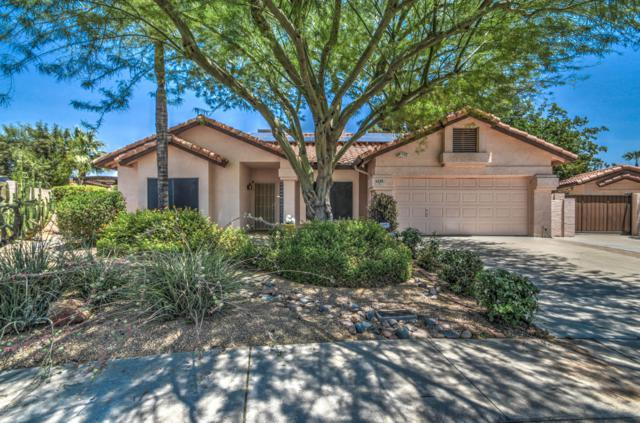 6248 W Grandview Road, Glendale, AZ 85306 (MLS #5944584) :: The Laughton Team