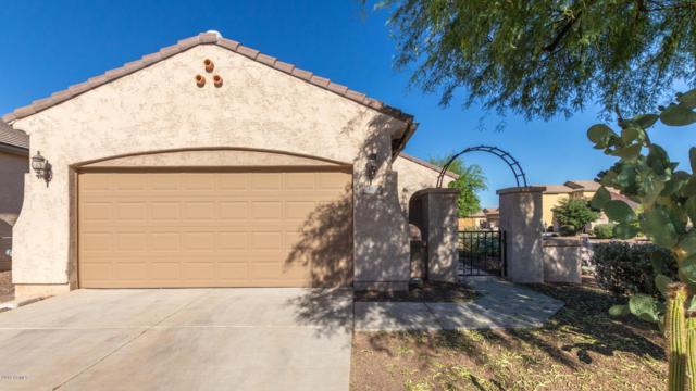 20580 N 261ST Avenue, Buckeye, AZ 85396 (MLS #5944593) :: The Property Partners at eXp Realty
