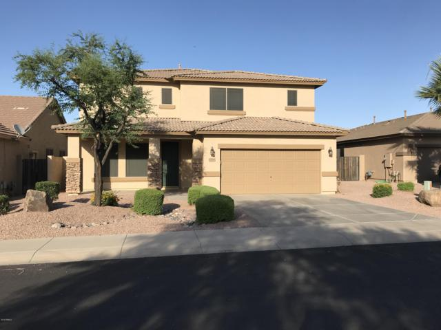 6505 S View Lane, Gilbert, AZ 85298 (MLS #5944603) :: Openshaw Real Estate Group in partnership with The Jesse Herfel Real Estate Group