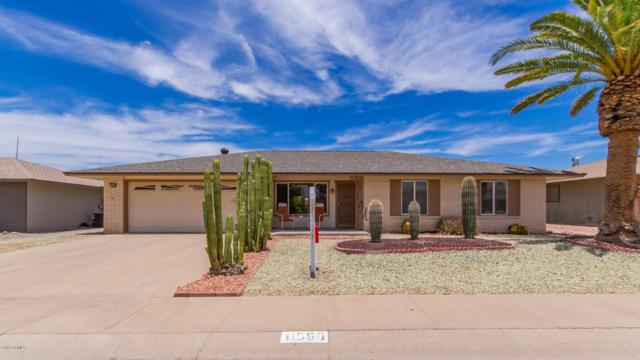 11080 W Pleasant Valley Road, Sun City, AZ 85351 (MLS #5944611) :: Occasio Realty