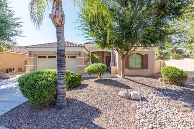 1174 E Benrich Drive, Gilbert, AZ 85295 (MLS #5944639) :: Occasio Realty