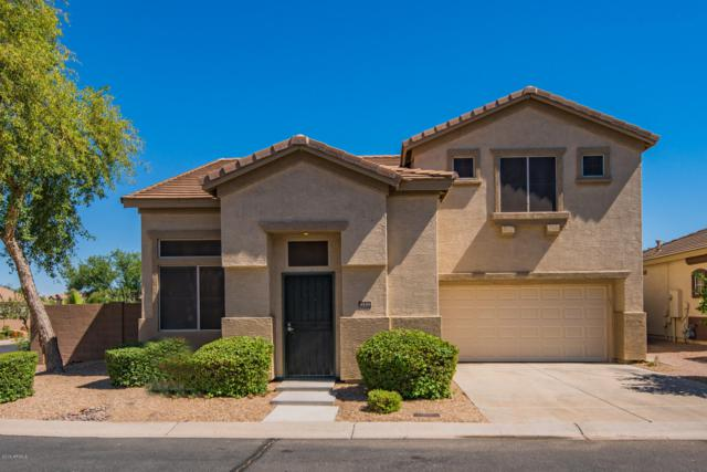 9339 E Lompoc Avenue, Mesa, AZ 85209 (MLS #5944642) :: The W Group