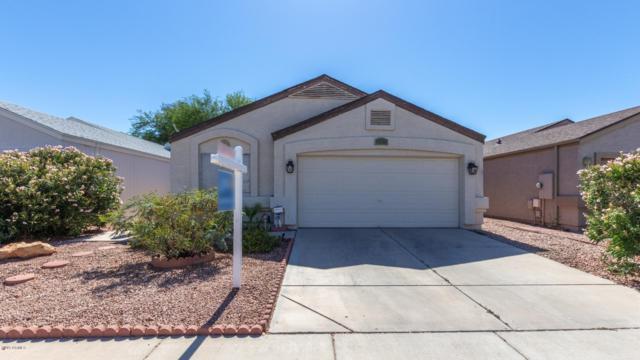 17415 N 28TH Drive, Phoenix, AZ 85053 (MLS #5944645) :: Revelation Real Estate