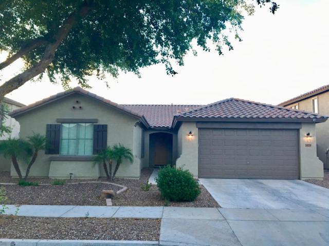 14536 W Poinsettia Drive, Surprise, AZ 85379 (#5944648) :: Gateway Partners | Realty Executives Tucson Elite
