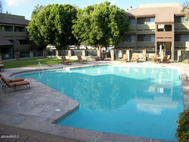 1331 W Baseline Road #263, Mesa, AZ 85202 (MLS #5944650) :: The Laughton Team