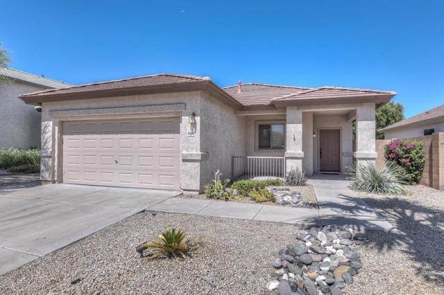 17564 N 167TH Drive, Surprise, AZ 85374 (MLS #5944656) :: The Laughton Team