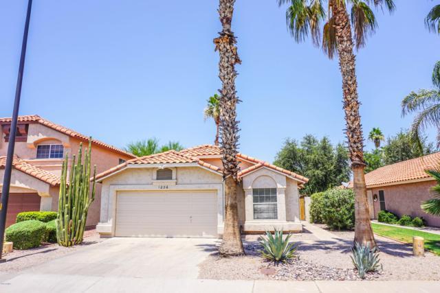 1026 W Redondo Drive, Gilbert, AZ 85233 (#5944662) :: Gateway Partners | Realty Executives Tucson Elite