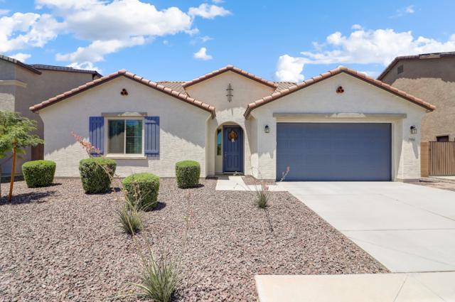 7906 W Andrea Drive, Peoria, AZ 85383 (MLS #5944667) :: Revelation Real Estate