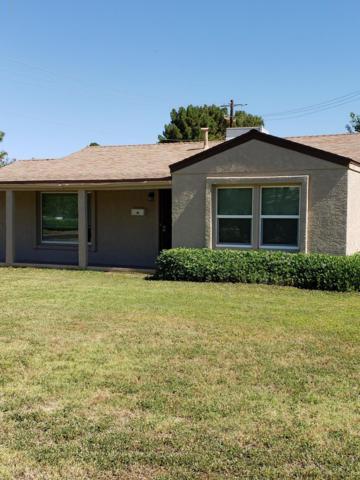 3002 E Monte Vista Road, Phoenix, AZ 85008 (MLS #5944691) :: The Kathem Martin Team