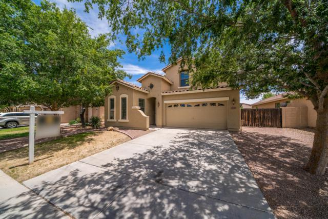 3539 E Arianna Avenue, Gilbert, AZ 85298 (MLS #5944696) :: REMAX Professionals
