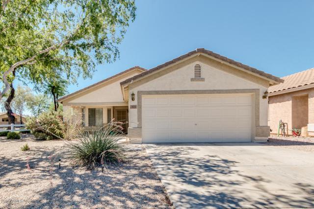 323 E Senna Way, San Tan Valley, AZ 85143 (MLS #5944706) :: REMAX Professionals