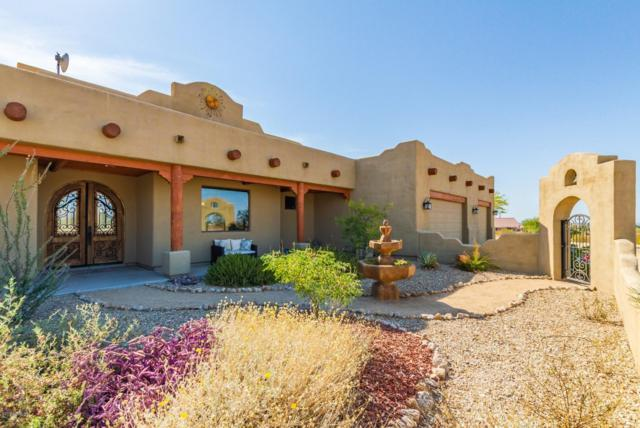 8428 S 133rd Avenue, Goodyear, AZ 85338 (MLS #5944710) :: Kortright Group - West USA Realty