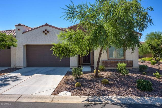 4041 N 164TH Drive, Goodyear, AZ 85395 (MLS #5944713) :: The Garcia Group