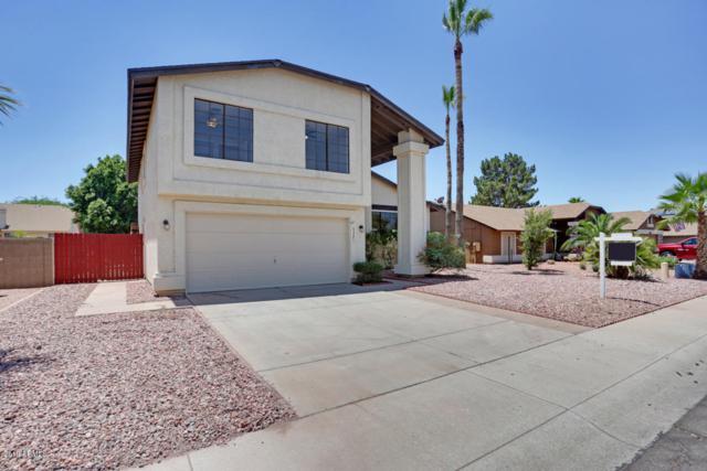 6321 W Campo Bello Drive, Glendale, AZ 85308 (MLS #5944725) :: Revelation Real Estate