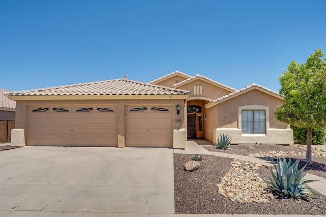 290 W Cardinal Way, Chandler, AZ 85286 (MLS #5944753) :: Kepple Real Estate Group