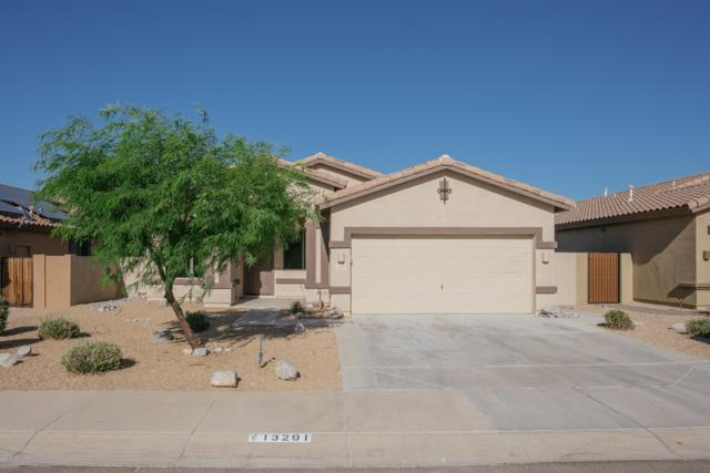 13291 S 175TH Drive, Goodyear, AZ 85338 (MLS #5944780) :: Occasio Realty