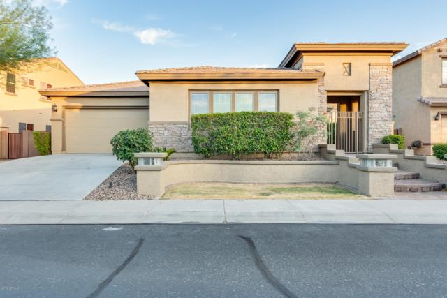 6901 W Dale Lane, Peoria, AZ 85383 (MLS #5944794) :: CC & Co. Real Estate Team