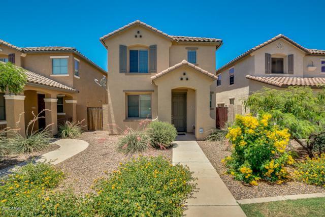 1685 E Elgin Street, Gilbert, AZ 85295 (MLS #5944805) :: Occasio Realty