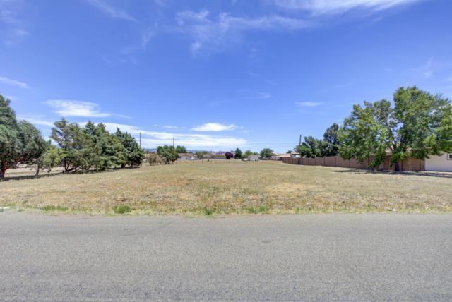 3225 N Valley View Drive, Prescott Valley, AZ 86314 (MLS #5944817) :: Kepple Real Estate Group