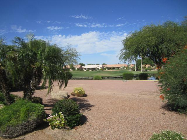 3101 N Palmer Drive, Goodyear, AZ 85395 (MLS #5944858) :: The W Group