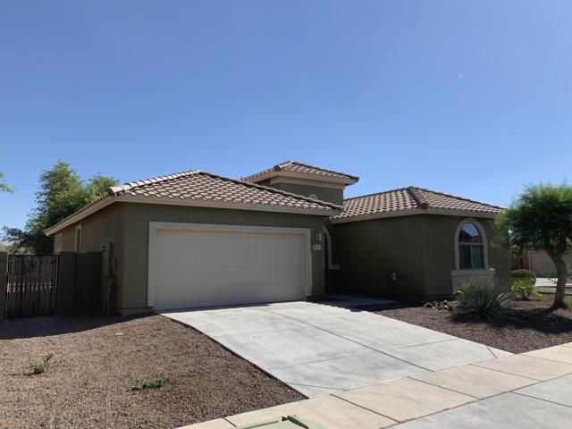 8771 W Lamar Road, Glendale, AZ 85305 (MLS #5944875) :: The W Group