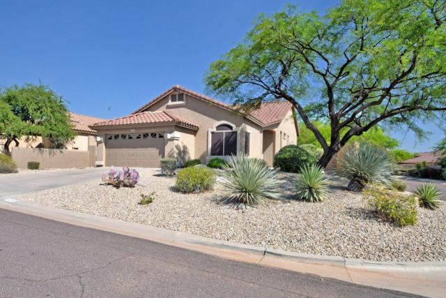 10367 E Saltillo Drive, Scottsdale, AZ 85255 (MLS #5944880) :: The W Group
