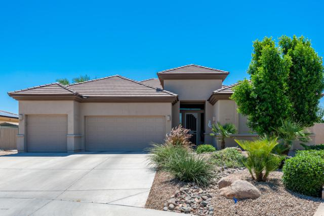 3253 N 144 Drive, Goodyear, AZ 85395 (MLS #5944907) :: Yost Realty Group at RE/MAX Casa Grande