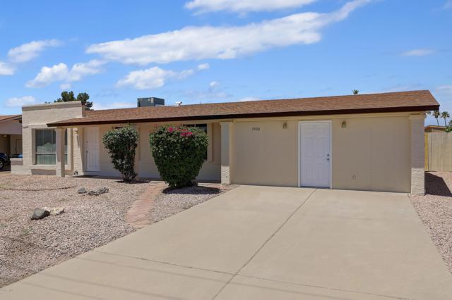 19012 N 15TH Avenue, Phoenix, AZ 85027 (MLS #5944958) :: Revelation Real Estate