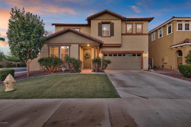 9111 S Beck Avenue, Tempe, AZ 85284 (MLS #5944992) :: The Kenny Klaus Team
