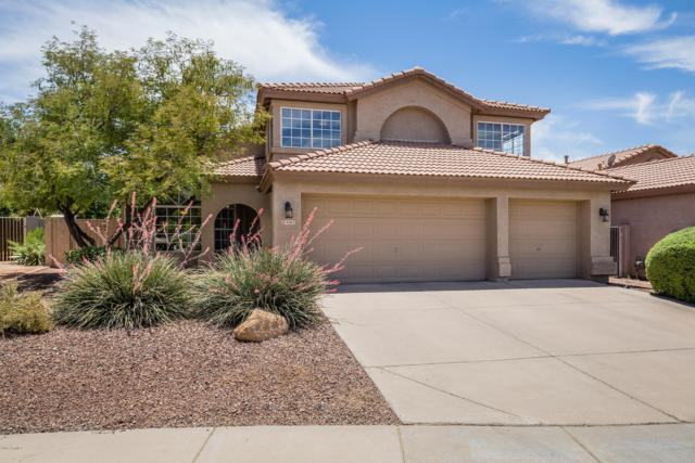 4285 E Molly Lane, Cave Creek, AZ 85331 (MLS #5944995) :: Occasio Realty