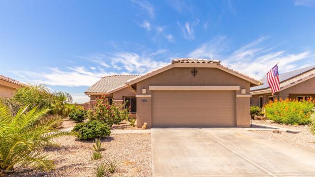 23121 W Antelope Trail, Buckeye, AZ 85326 (MLS #5945091) :: The Property Partners at eXp Realty