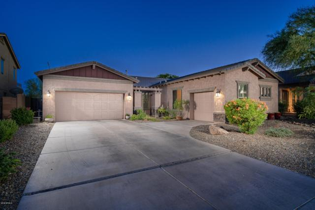 12339 W Desert Mirage Drive, Peoria, AZ 85383 (MLS #5945092) :: The Pete Dijkstra Team